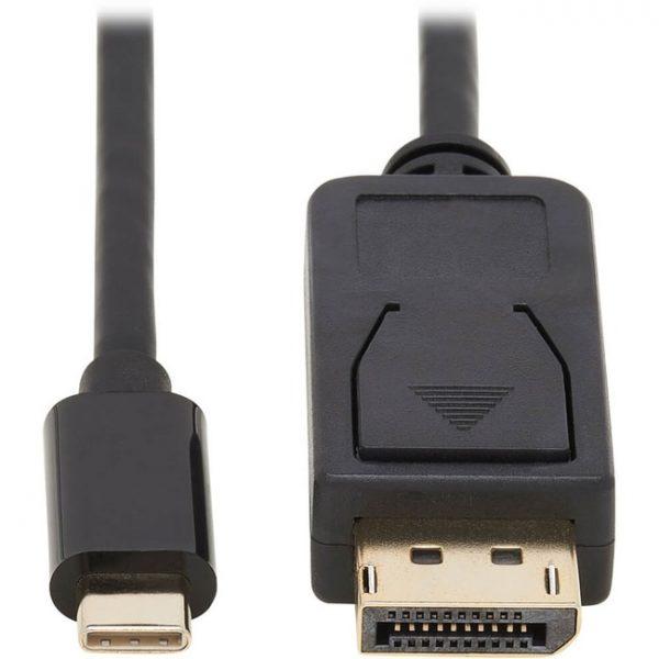 Tripp Lite USB C to DisplayPort Adapter Cable Bi-Directional 4K M/M 10ft